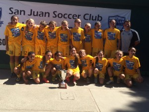 California Cup, Gold Division, Champions