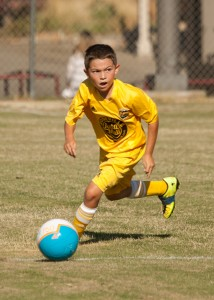 Juniors Cup U9 Boys Gold_2014