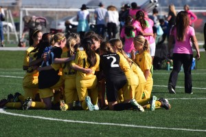 U12G Gold_State Cup Champions1_2015